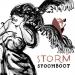 stoomboot-storm